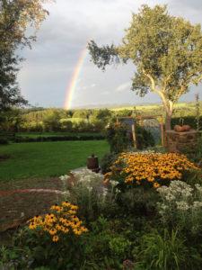 Ferienhaus Eifel Uedelhoven Garten nebenan 08.2017