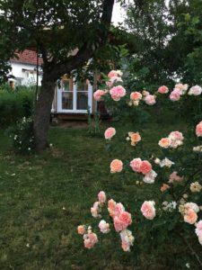 Ferienhaus Eifel Uedelhoven Gartenhaus nebenan 26.06.2019