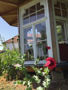 Ferienhaus Eifel Uedelhoven Gartenhaus nebenan 30.06..2019