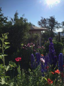 Ferienhaus Eifel Uedelhoven Gartenhaus nebenan 30.06.2019