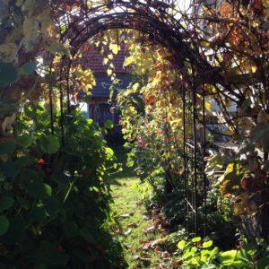 Ferienhaus Eifel Uedelhoven Laube nebenan
